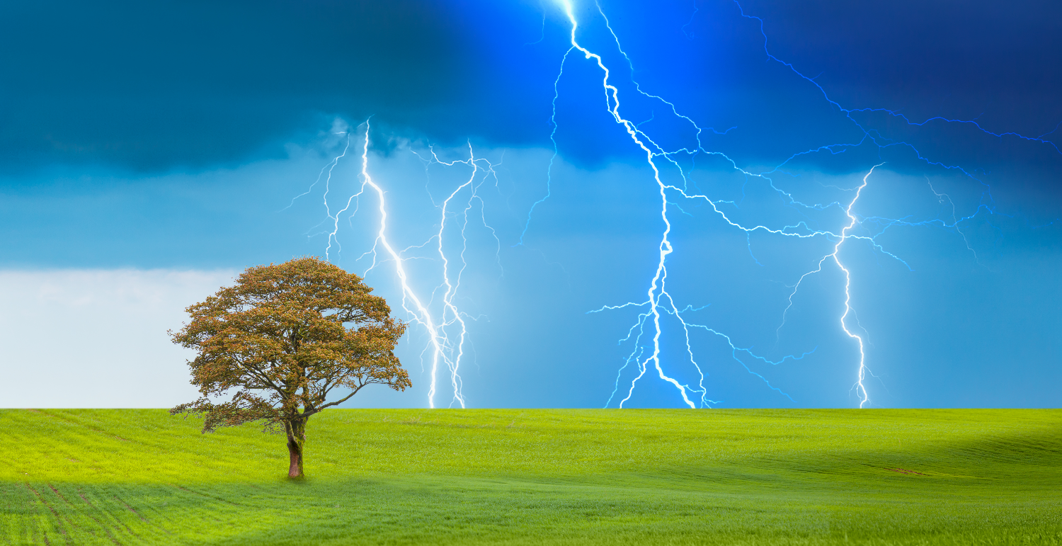 Thunder and lightning over a lone tree